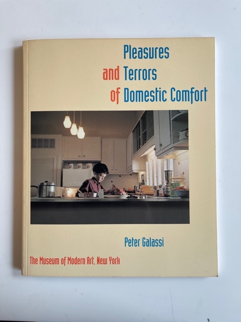Pleasures and Terrors of Domestic Comfort